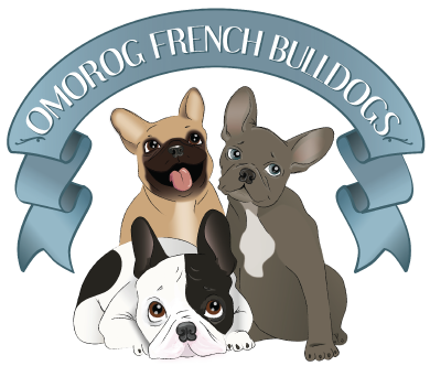 Pricing | Omorog French Bulldogs